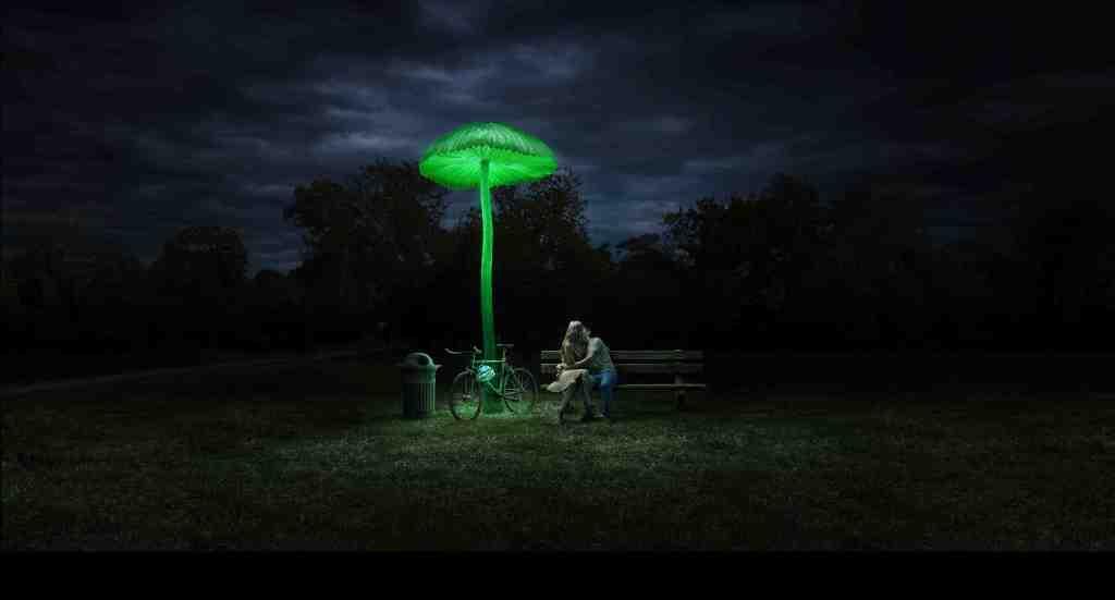 Mushroom - Creatures of Light - The Field Museum - DDB Chicago 2012