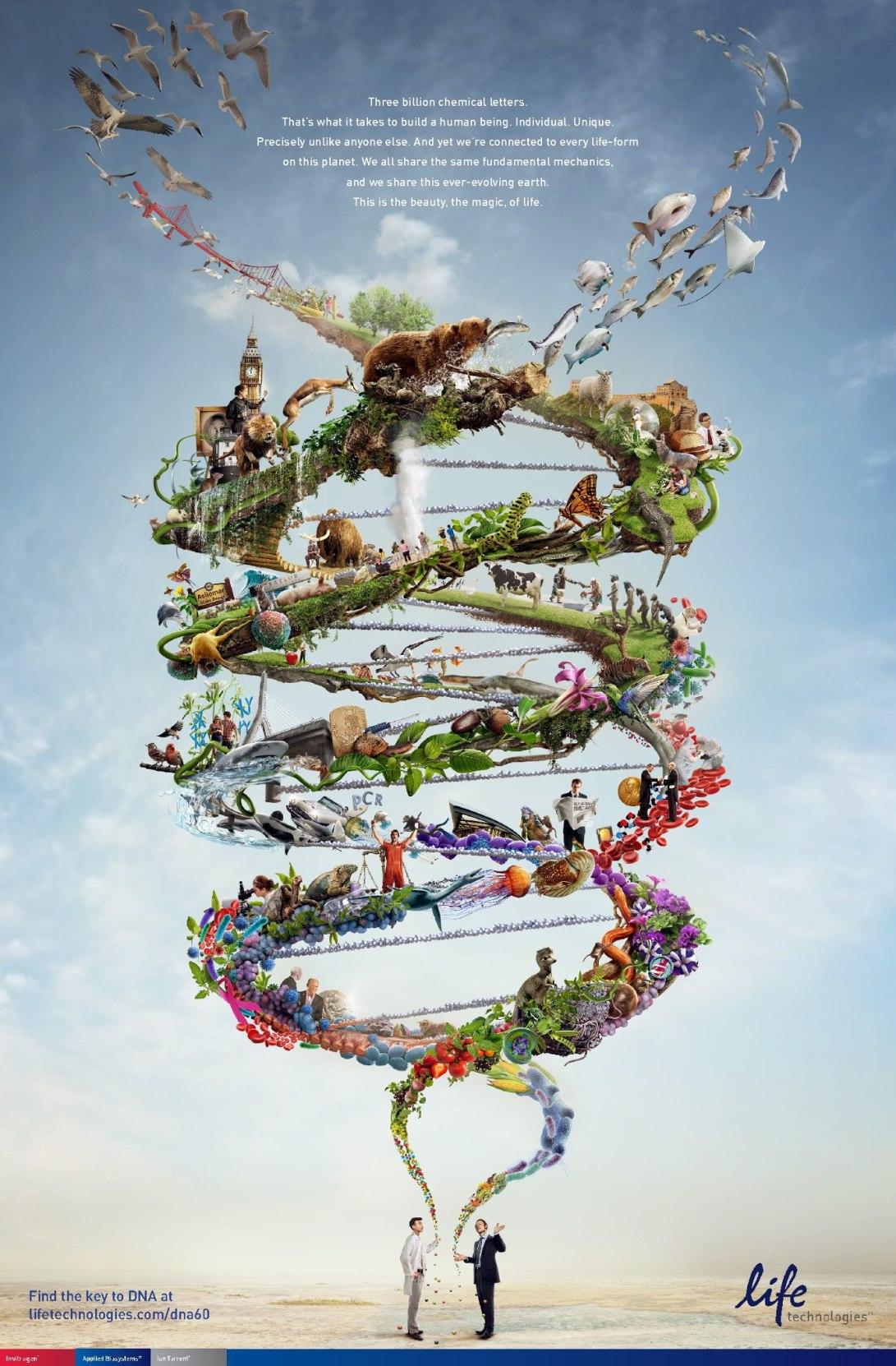DNA Helix Structure for Life Technologies by Ricardo Salamanca / Salamagica