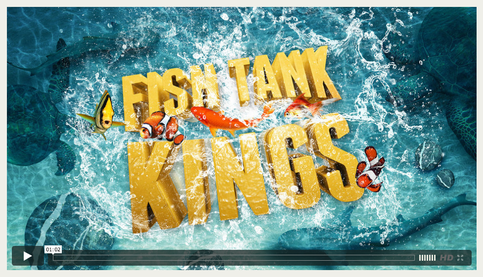 NAT GEO | FISH TANK KINGS | SULFURICA